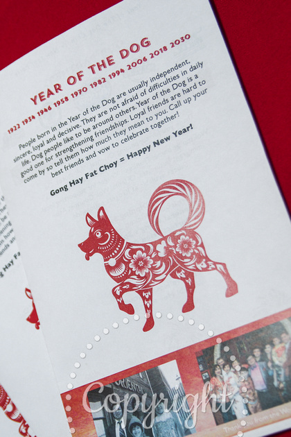 Teah Longland PHOTOGRAPHY | Oriental Wok~Year of the Dog